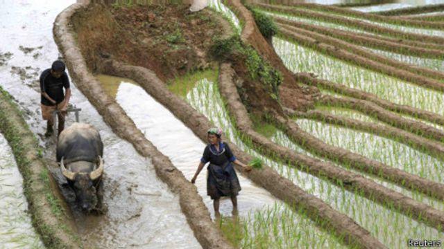 Người H'Mông ở miền Bắc Việt Nam