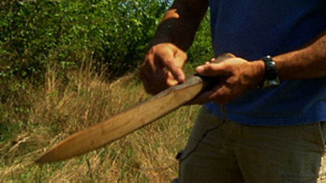 با این تکه چوب او گیاهان را از ریشه بیرون میآورد