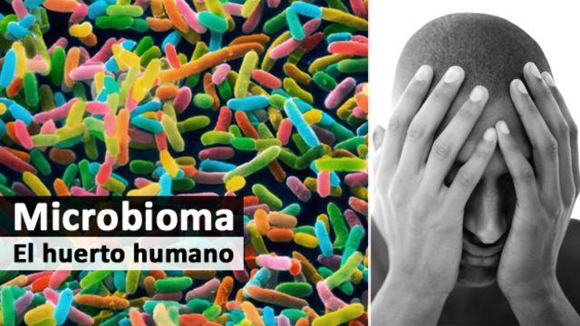 Microbioma - psiquiatría