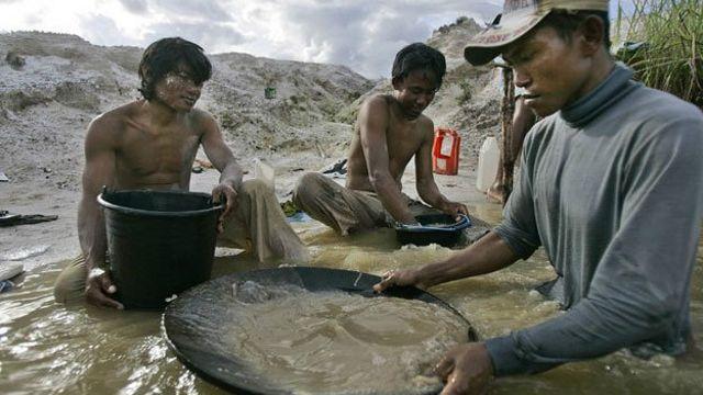 Extracción de oro