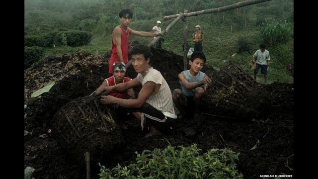 Recolectores de té en acción. Foto de Arindam Mukherjee