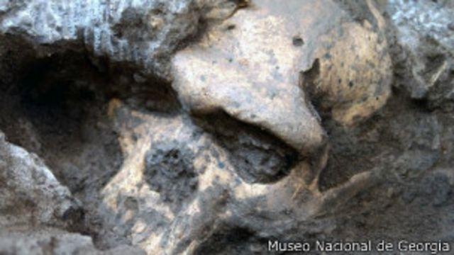 Cráneo homínido