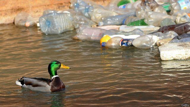 Jumlah sampah plastik sama dengan lima kantong belanja berisi plastik untuk setiap meter garis pantai dunia.