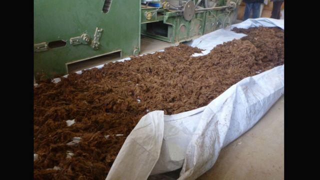 کشمیره قبل از پروسس/فرآیند برای خشک شدن هموار میشود.