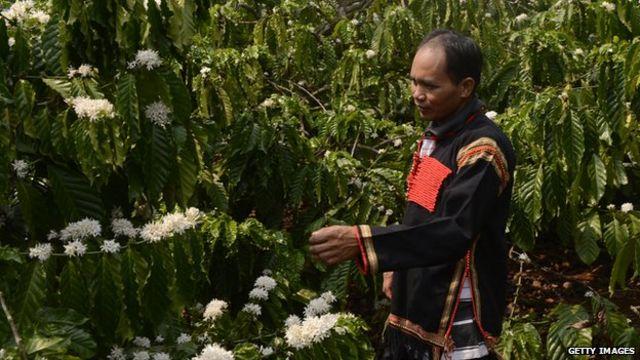 """""""Hiệp hội các sản phẩm từ nông nghiệp ở Việt Nam có vai trò rất quan trọng"""""""