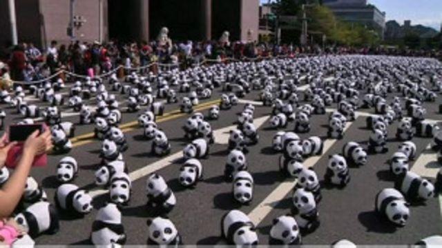 Pandas de papel (BBC)