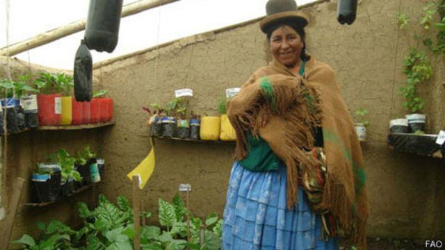 Invernadero de El Alto