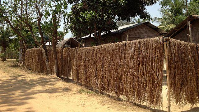Desa di Assam