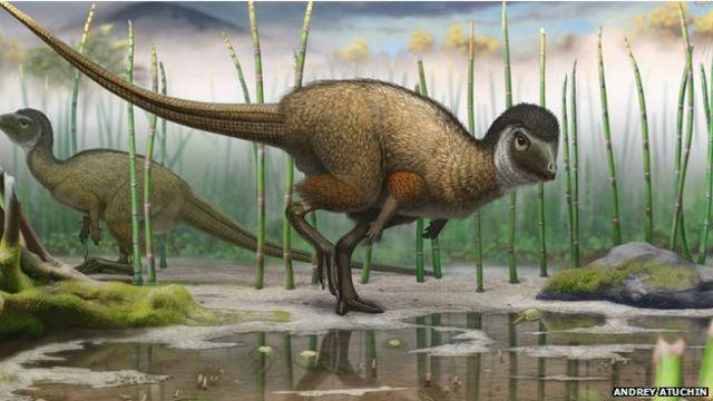 Вид динозавра - кулиндадромеус забайкальский (kulindadromeus zabaikalicus)