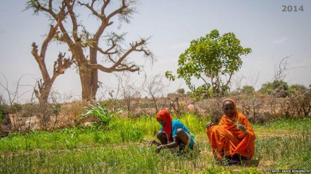 Mazauna karkara a Sudan galibi manoma ne, amma tashin hankali ya raba su da muhallansu da kuma dabbobinsu.