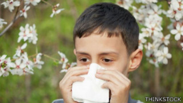 En el Reino Unido una de cada tres personas sufre de algún tipo de alergia.