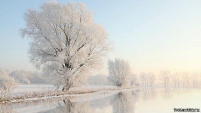 La deficiencia de vitamina D es más frecuente en los meses de invierno.