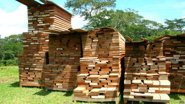 Una operación conducida recientemente por la aduana de Perú decomisó, en sólo tres meses, un volumen de madera ilegal suficiente para llenar más de seis piscinas olímpicas.