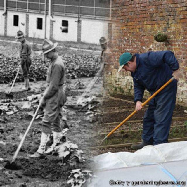 Veteranos trabajando en jardinería en 1917 y hoy, algo que ayuda a combatir el trauma de la batalla. Images courtesy of Getty and gardeningleave.org