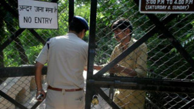 दिल्ली में बाघ ने एक युवक को मारा