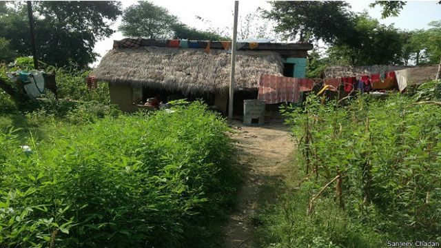 सर्वोदयी गांव, बोधगया, बिहार