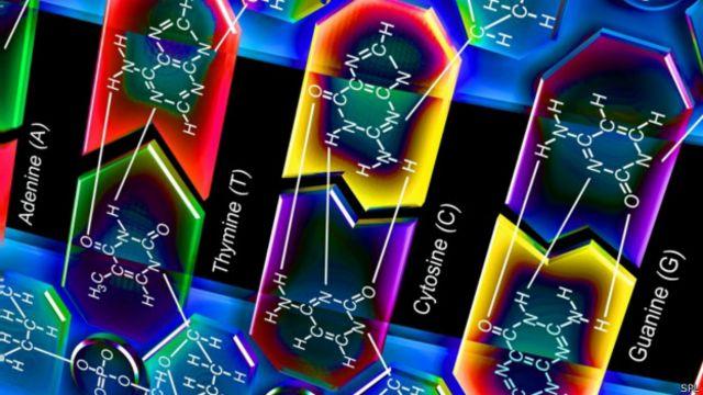 نحوه قرار گرفتن بازهای آلی در مولکول DNA