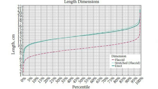 نرموگرام طول آلت تناسلی