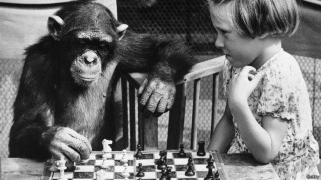 La busqueda de la inteligencia ha sido constante, pero, ¿qué pasa si la busqueda ha sido en vano?
