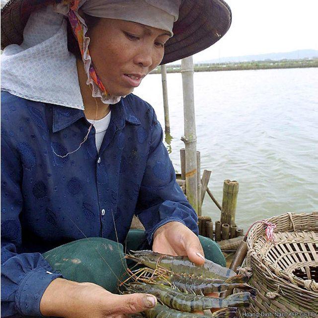 Việt Nam xuất siêu vào Hoa Kỳ