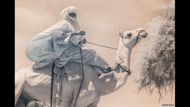 د ګرځنده عکسونو مشهور عکاس ټیري ګولډ د نيژير د کوچیانو دود، کلتور او د ژوند بڼه د عکسونو په یوه البوم کې انځور کړې.