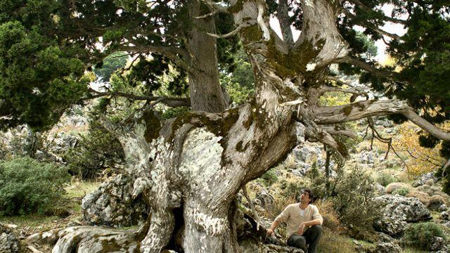 A natureza tem a resposta para muitos dos problemas que enfrentamos, disse Bernabé Moya.