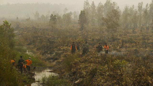 Personel TNI diturunkan untuk membantu memadamkan kebakaran hutan dan lahan di Kalimantan Tengah.