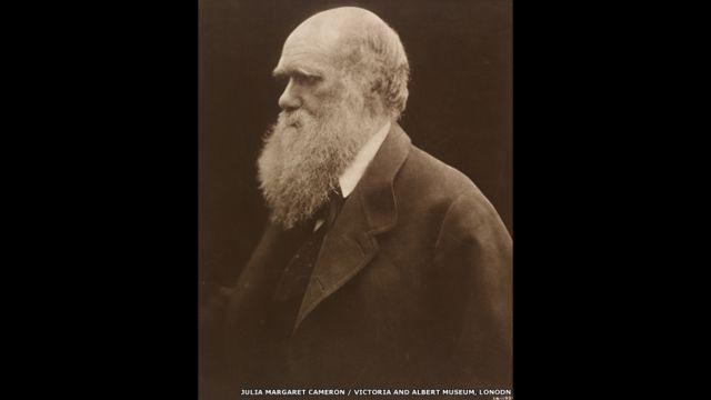 Чарльз Дарвин. Фото Джулии Маргарет Кэмерон, 1868 год.