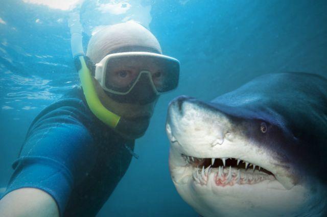Fazer selfies em situações como essa pode ser perigoso e até fatal