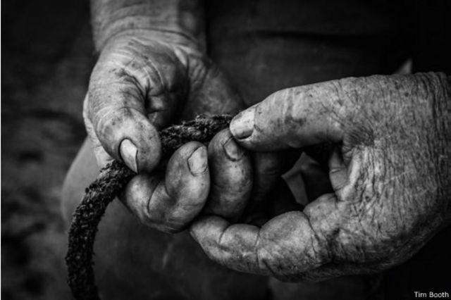 les mains de l'ancien pêcheur d'homard Dave Sales
