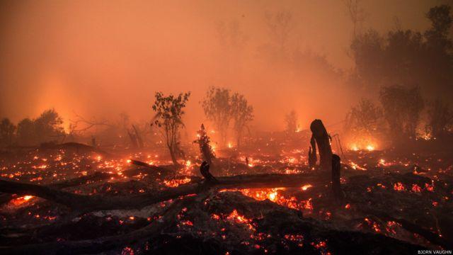"Lahan gambut yang terbakar di Kalimantan Tengah. Bjorn Vaughn mengatakan ini tak ubahnya seperti dengan aliran lava yang apinya membuncah ke luar. ""Seperti gunung api mini yang mengeluarkan magma, memakan vegetasi di atasnya. Beginilah kebakaran gambut bekerja, dan pemadam kebakaran kewalahan memeranginya."""