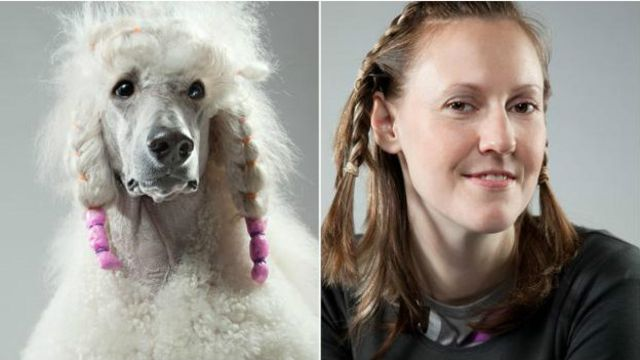 Para psicólogos, tendemos a nos apegar a cães com personalidades parecidas com a nossa