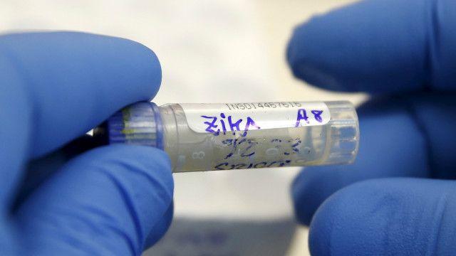 Avanço da microcefalia e do zika vírus nas Américas foi declarado emergência internacional pela OMS nesta semana