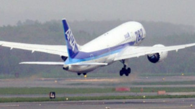 En 2013 la línea japonesa ANA varó su flota de aviones Dreamliners debido a un incidente que involucró baterías de litio.