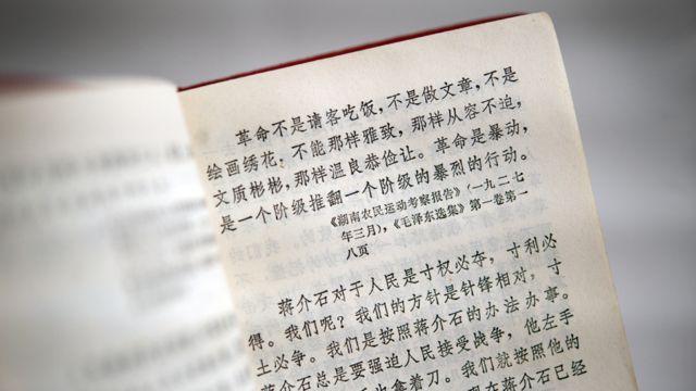 """""""Revolusi bukan pesta makan malam, bukan pulaseperti menulis artikel atau membuat lukisan; tidak bisa seanggun, semenyenangkan atau selembut itu. Revolusi adalah kerusuhan, sebuah tindakan keras dari satu kelas yang menjatuhkan kelas lain."""" Begitutertulis dalam 'Buku Merah Mao'."""
