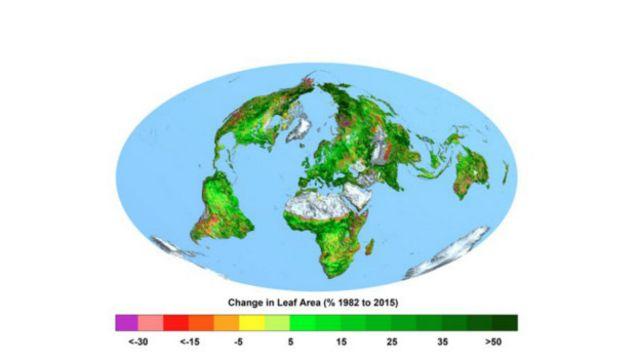 На этой схеме видно, как сильно увеличилась в процентом отношении площадь зеленых массивов планеты с 1982 по 2015 год