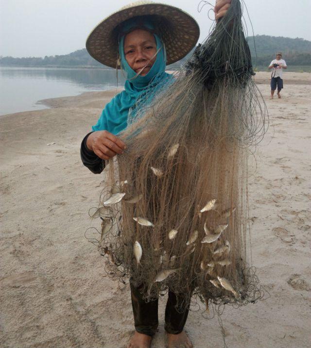 Ở nhiều quãng sông Mekong, cá chỉ còn bé như vậy