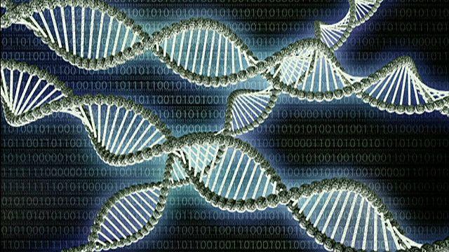 Так выглядит молекула ДНК. Ученые считают, что в ближайшее время они смогут вносить в нее изменения с помощью технологии CRISPR