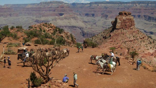只有通過溪流泛舟或者騎驢才能到達的幻影牧場