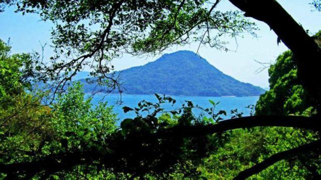 位於日本廣島灣的似島