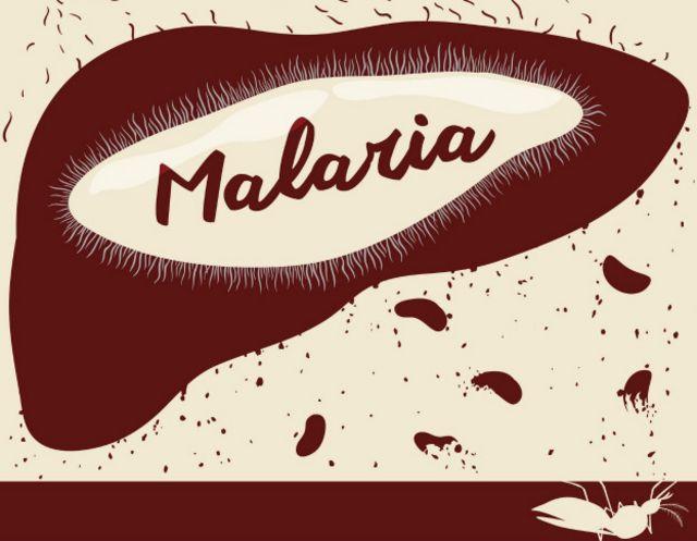 La malaria es una de las enfermedades que no requiere de grandes poblaciones para sobrevivir.