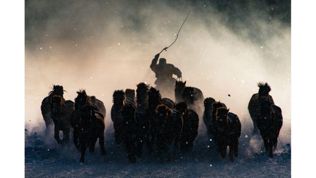 راعي الخيول في الشتاء -  أنتوني لاو