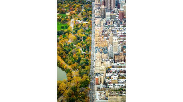 التقطت كاثلين دولماتش هذه الصورة لمتنزه سنترال بارك في نيويورك من طائرة هليكوبتر، وحصلت على مركز شرفي في فئة المدن.