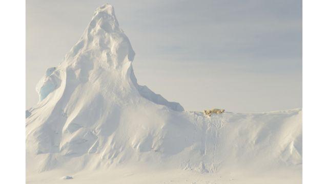 وأخيرا وليس آخرا تأتي هذه الصورة من فئة الطبيعة لدبين قطبيين مستلقيان على جبل جليدي في مضيق ديفيز على ساحل جزيرة بافن الكندية، للمصور جون رولينز.