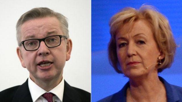 Bà Andrea Leadsom (phải) cho rằng Thủ tướng Cameron đã tuyên bố từ chức sau Brexit, thì người lãnh đạo mới không thể là người ủng hộ ở lại EU.