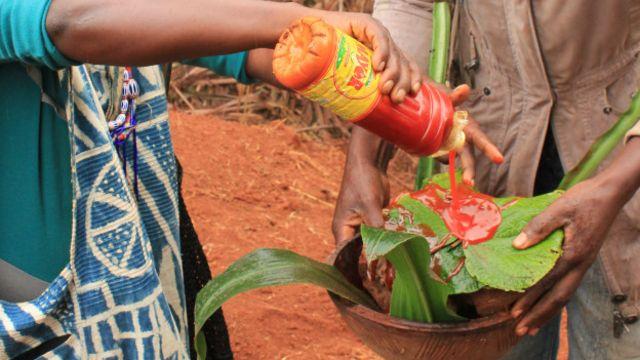 """... Il est ensuite conservé avec de l'huile de palme et des feuilles de l'""""arbre de paix""""."""