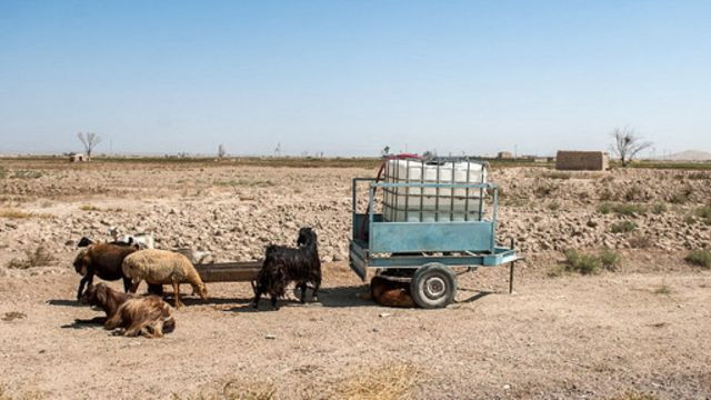 کارشناسان مدتهاست درباره بحران فزاینده کمبود آب در ایران هشدار می دهند