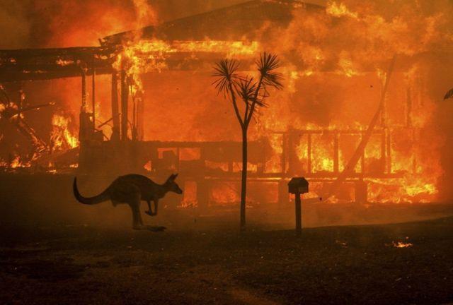ไฟป่าออสเตรเลีย