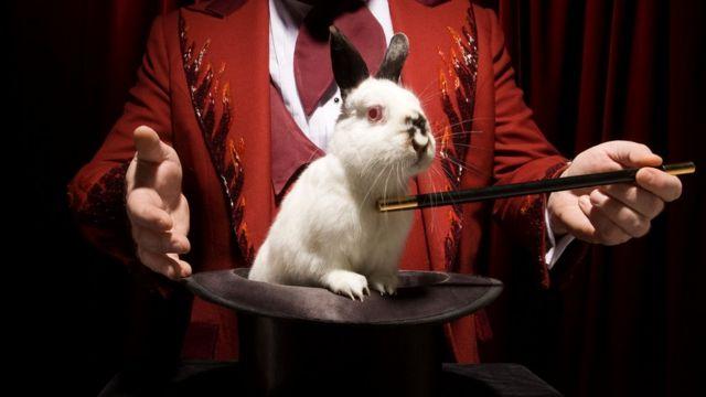 Во Франции и Испании кроликов ели с незапамятных времен, и только в первом столетии н.э. их стали брать в дом в качестве домашнего животного