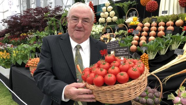 Magical Medwyn bags 12th RHS Chelsea show gold for his veg